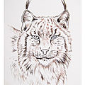 N- COLORIAGES ANIMAUX - NATURE