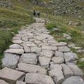 un chemin qui chemine !!!