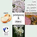Nouvelle saison créative au <b>Musée</b> <b>Colette</b> ...