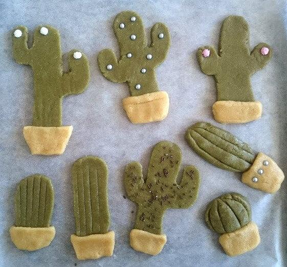 cactus crus