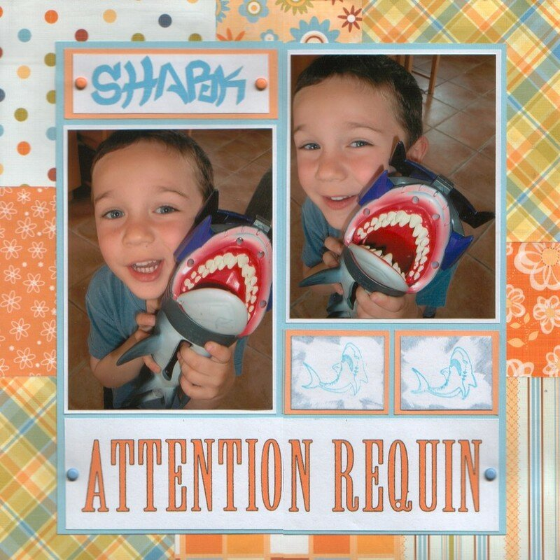 attention requin