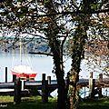 Balade au Lac et Merle 191117