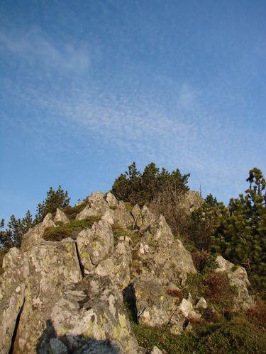 2008 05 23 Sur les hauteurs du Mont Mézenc au petit matin (8)