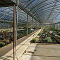 32 chez Boutet horticulture