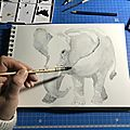 Aquarelle-l'éléphant