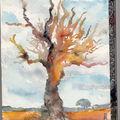 arbre couleur aquarelle