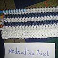 Explications brassière tricotée bicolore