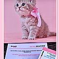 🎀 merci beaute test : mon test sensibiafine ... 🎀