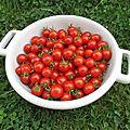 Tarte tomates cerise et saint-aghur