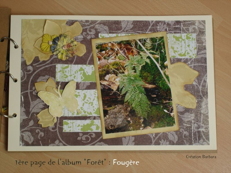 album foret_01_fougère