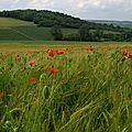 Projet de lieu experimental agricole en Lorraine (France).