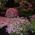Floralies 069