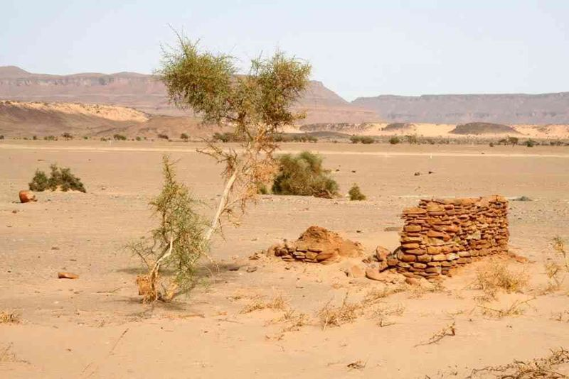 Seckasysteme-Mauritaniemauritania%202007%20024_jpg_rs