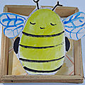 Ma petite collection d <b>insectes</b> !!!!