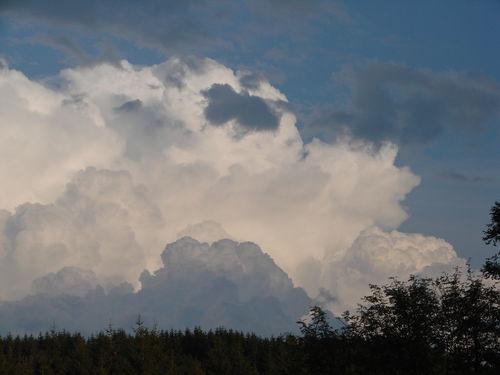 2008 09 04 Bourgeonnement de cumulus