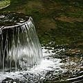 blog vives eaux 2