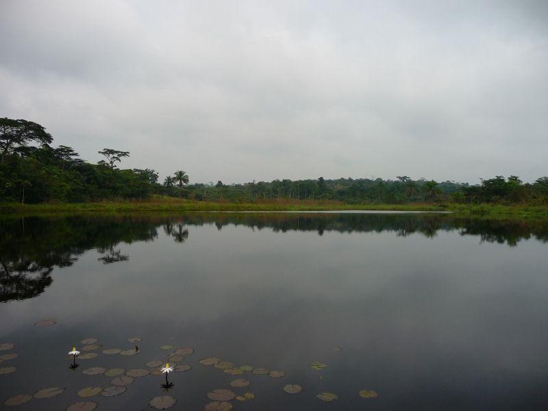 barrage de Mbulantampi (800x600)
