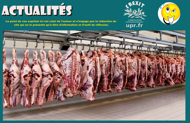 ACT BRESIL SCANDALES VIANDE