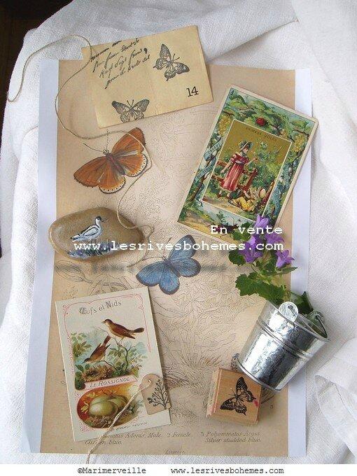 Collections marimerveille