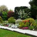 Ciboulette et photos du jardin de mimou