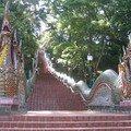 thailande0532