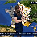 danielaprepeliuc02.2017_03_01_meteoBFMTV