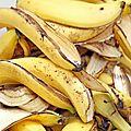 Les propriétés de la peau de banane