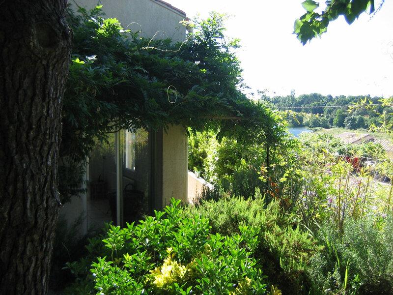 IMG_5258 vue du jardin sur Payré copier