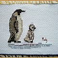 244 Pingouin avec Dominique août 2016