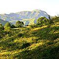 Montagne d'Esterençuby un petit matin de juin...