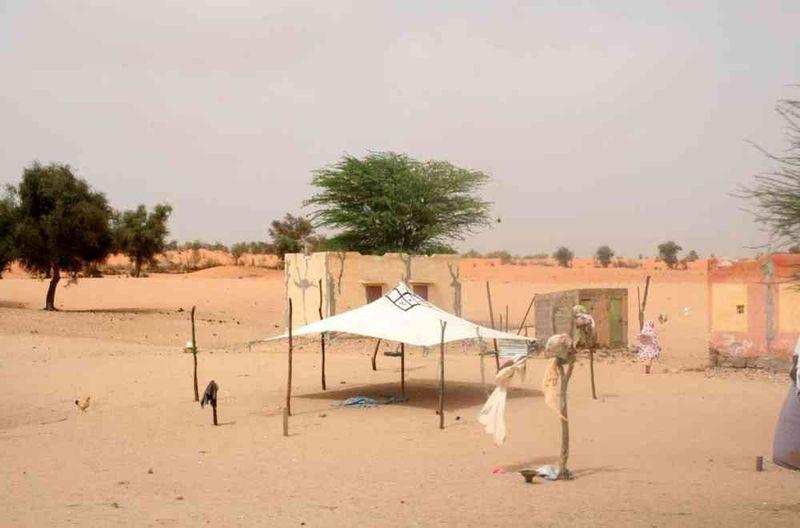 Seckasysteme-Mauritaniesenemauritanie07%20051_jpg_rs