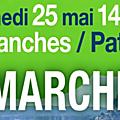 troisième Marche pour le <b>Climat</b> à Avranches le samedi 25 mai 2019