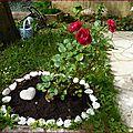 ♥ quelques roses du jardin - edit ♥