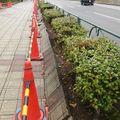 Liquéfaction du sol et dommages: Seishin-cho, Rinkai-cho
