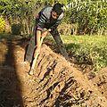 L'activité de jardinage du 7 janvier 2016