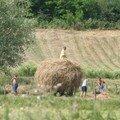 Travaux des champs dans un petit village Bulgare