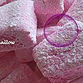 Chamallow ( au thermomix )