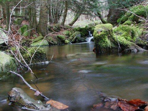 2008 04 20Un ruisseau pris sur une durée d'une seconde