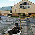 0472 - 18-11-2012 - Plantation arbre bicentenaire