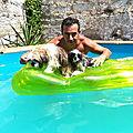 NEWS 2019 Chambres d'hôtes libertine gay piscine naturiste Montpellier <b>34</b> hérault et Nimes 30 gard soirée étape vrp 40 euros
