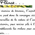 Flâner...