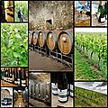Les domaines vinsmoselle - luxembourg