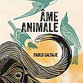 Pablo Salvaje -