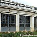 Ménagerie du Jardin des Plantes : la <b>tortue</b> Périclès devient centenaire !