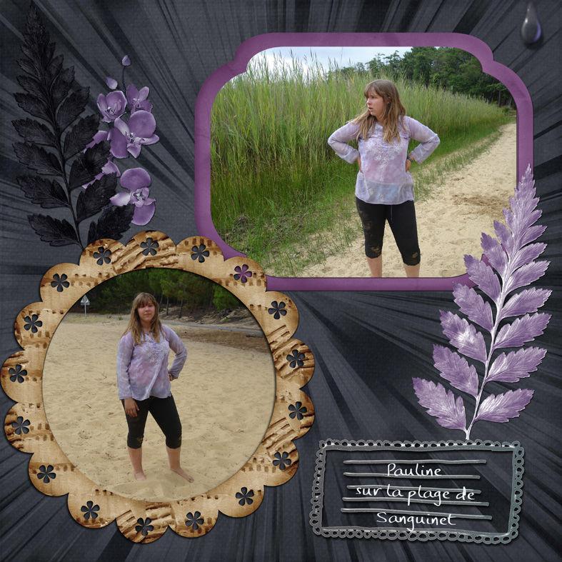 Sur la plage de Sanguinet