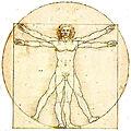 Medecine holistique : tout est relié