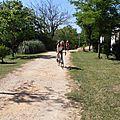 photos en route rando à Goudargue 2014 (2)