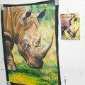 Le rhino d'Anne Laure