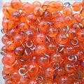 Graines de perles