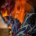 La forge, médiévales de montreuil bellay